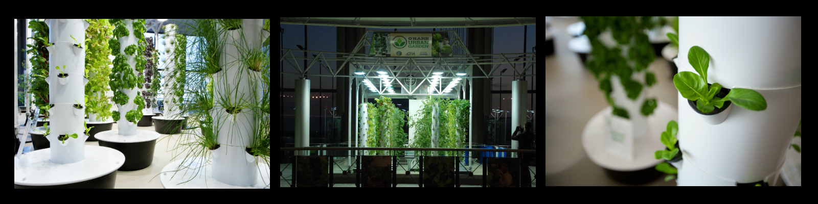 Aeroponic Garden | Chicago O\'Hare International Airport (ORD)